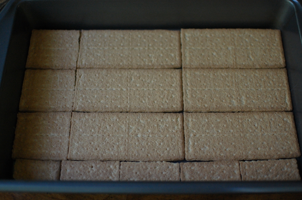 Graham Crackers in 9x 13 in pan
